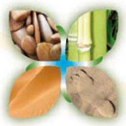 Massages-bien-etre et shiatsu